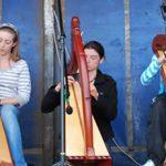 Crúit | Harp Classes